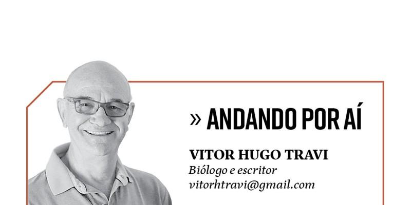 CURIOSOS NO CAMINHO DO MONTE NEGRO