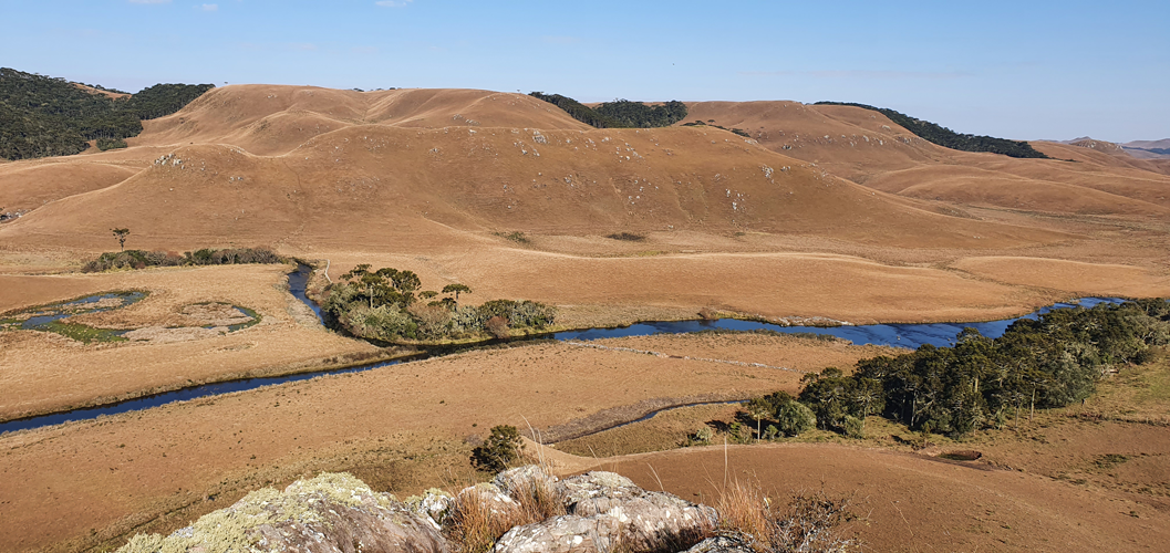 A paisagem original